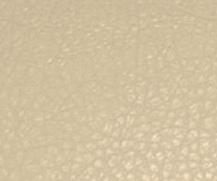 Polaris beige.jpg